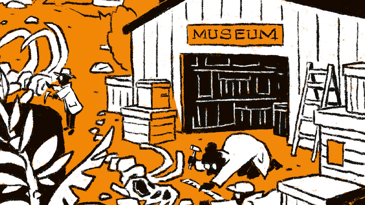 museum histoire naturelle aix en provence